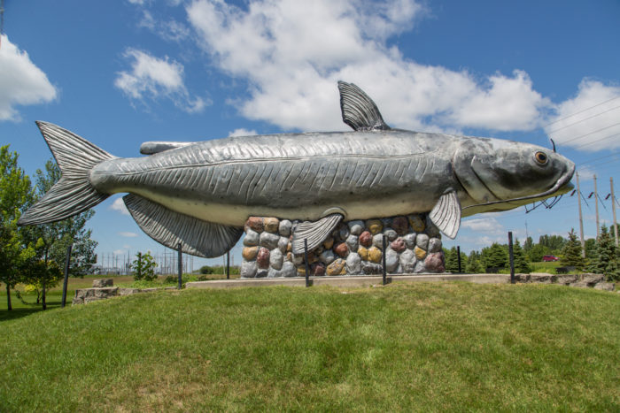 6. Fun fact: The Wahpeton Wahpper (the name of this 40' long catfish statue) was created by the same artist who created Salem Sue, Dave Oswald.
