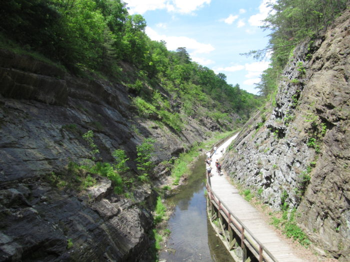 Along the C&O Canal path in Oldtown, you'll find the historic Paw Paw Tunnel.