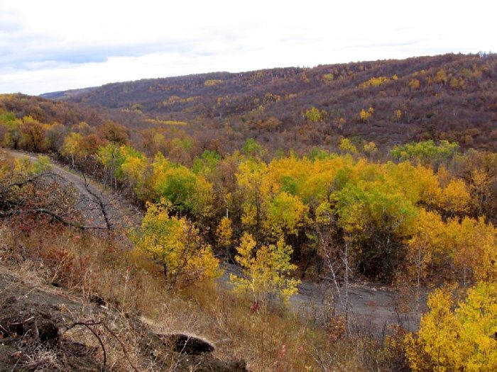 3. Ride an ATV through the Pembina Gorge during the fall