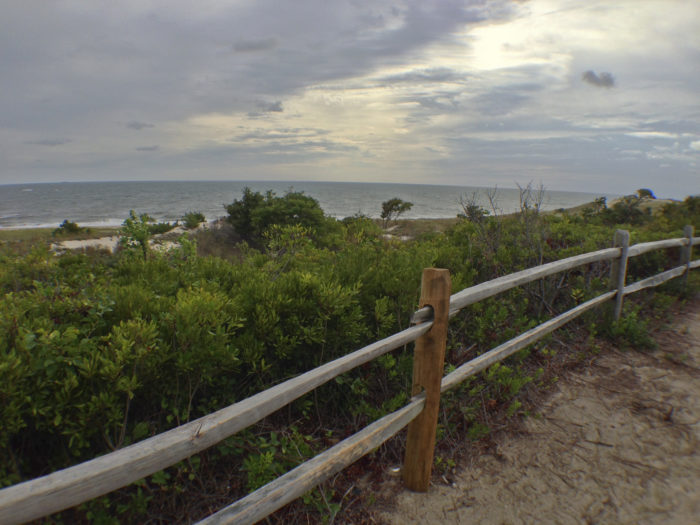 And no matter how many times I visit, I never quite get sick of the beach views in Rehoboth and Lewes along this trail.
