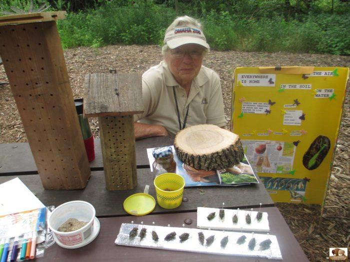 The park's wonderful volunteers offer enrichment activities to help visitors learn more about nature, animals, and the park itself.