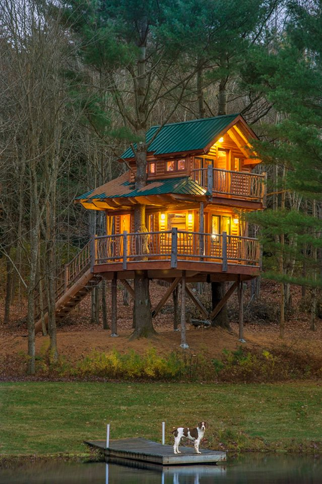 Four extravagant guestrooms and a magical treehouse await.