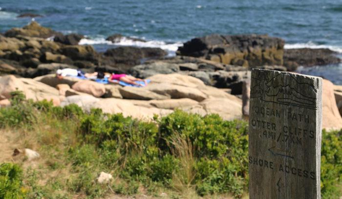 7. Ocean Path, Acadia National Park
