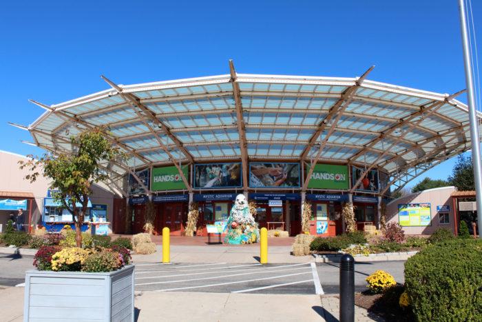 2. Visit the awesome Mystic Aquarium.