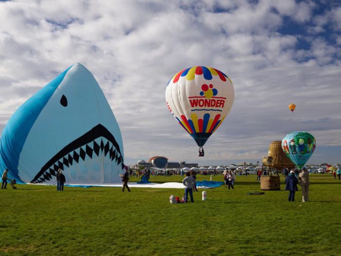 3. The Albuquerque International Balloon Fiesta (Albuquerque)