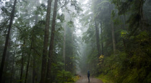 You'll Never Forget This Enchanting Hike Along Oregon's Turquoise River
