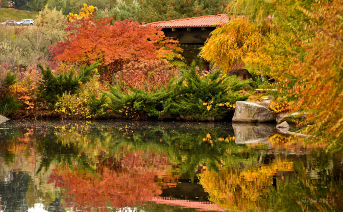 5. Boise River Greenbelt