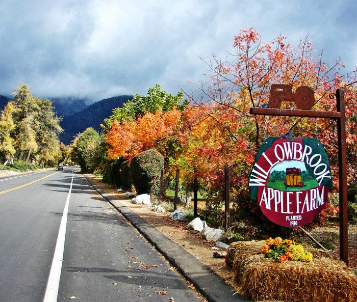 5. Willowbrook Apple Farm -- 12099 Oak Glen Rd, Oak Glen, CA 92399