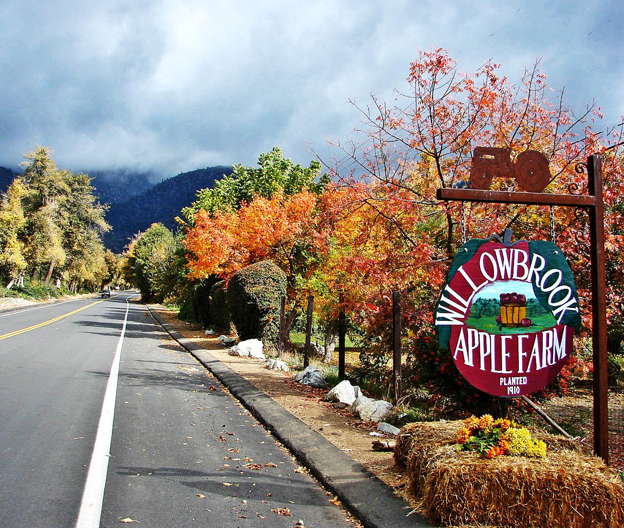 Image of Willowbrook Apple Farm entrance
