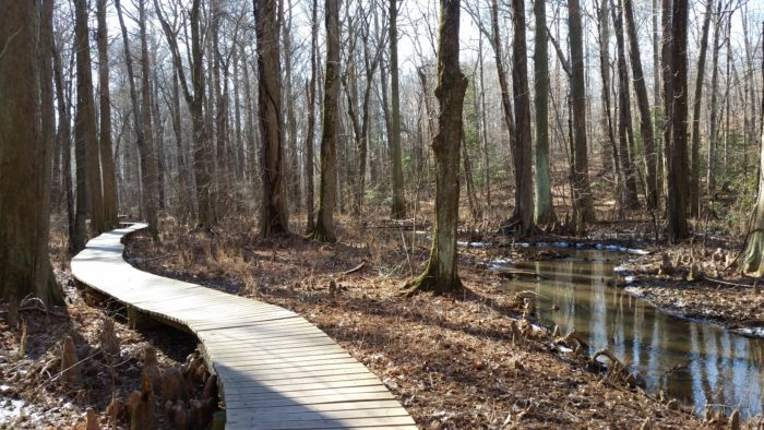 The walk through this natural sanctuary is free and is open year-round.