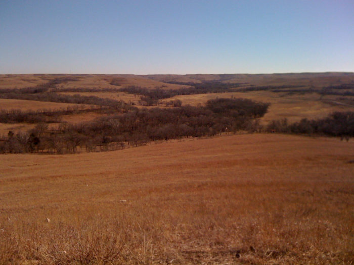 ...and wide open spaces as far as the eye can see.