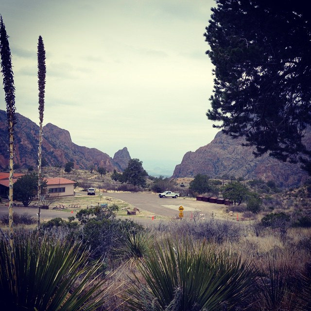 You'll start at the Chisos Basin Trailhead at the base of the mountains.