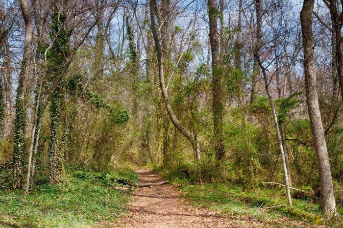 6. Belle Isle Trail (Richmond)
