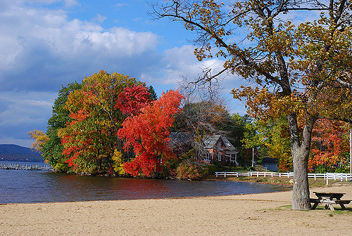 However, in certain areas of the state, minor dry conditions can make trees pop with bright red.