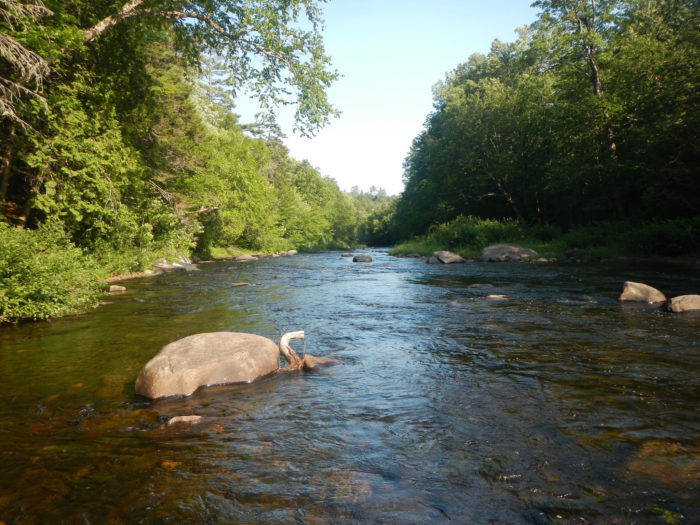 Just east of Route 15 in Shirley, the Little Wilson Stream runs east towards Big Wilson Stream.