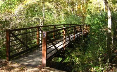 2. Bailey's Woods/Rowan Oak Hiking Trail, Oxford