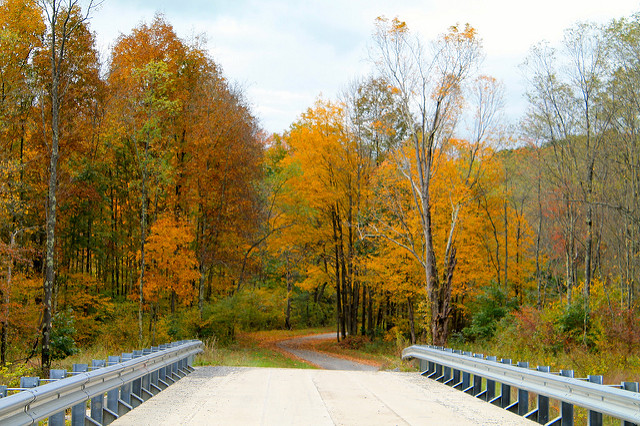 Drive past the masterpiece of fall foliage splashed across the landscape along the Laurel Highlands Scenic Byway. The 68-mile byway winds past sprawling farms, waterfalls, Ohiopyle State Park, and Fallingwater.