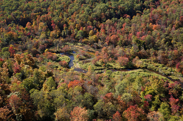 2. Kinzua Bridge State Park