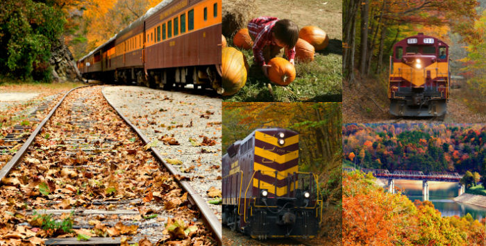 2013 Fall Collage