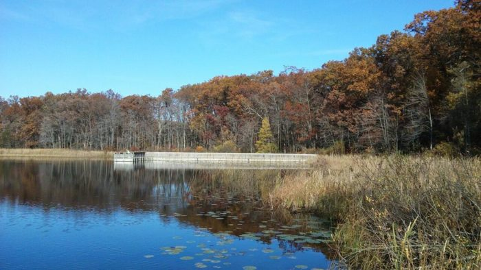 5. Yankee Springs State Recreation Area (2104 S Briggs Rd, Middleville)