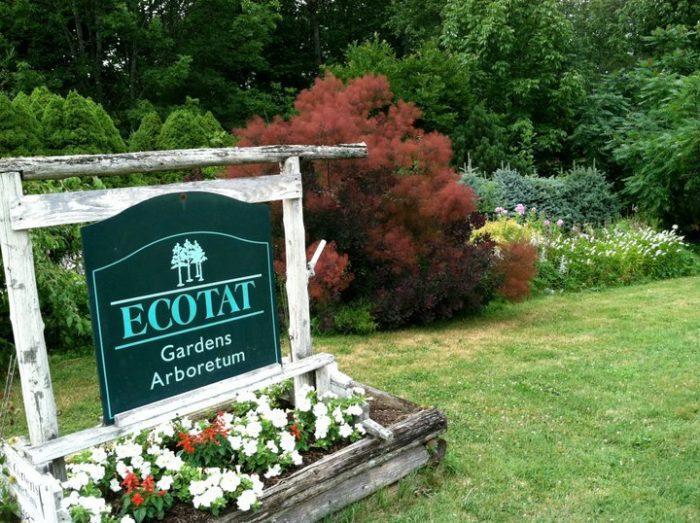 7. Ecotat Gardens and Arboretum, Hermon