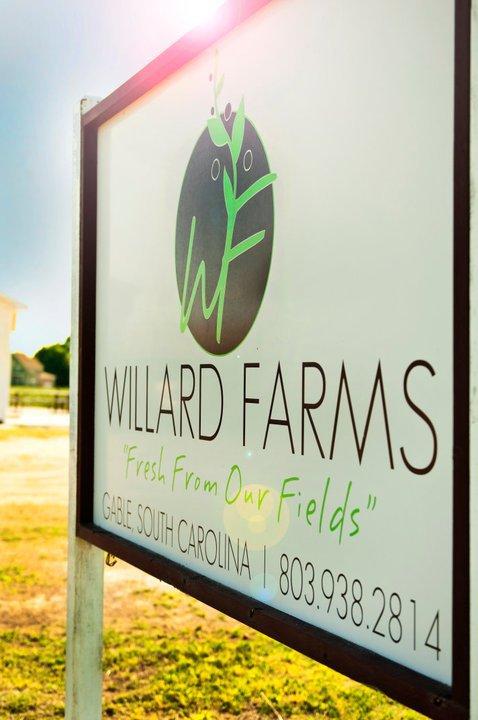 10. Willard Farms - Gable, SC