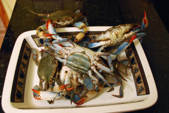 4. Crab Season: Late April - Early Fall