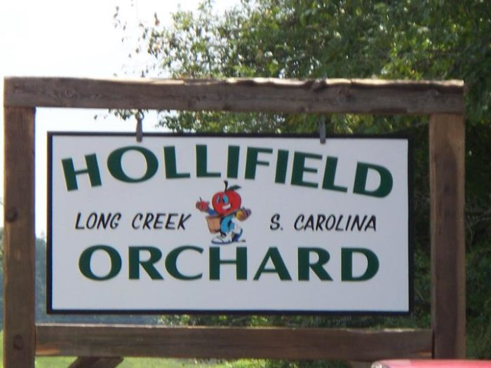 5. Hollifield's Orchard - Long Creek, SC