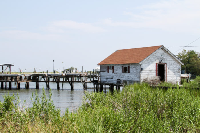 Deal Island is special because it remains simple and untouched by the tourism industry.