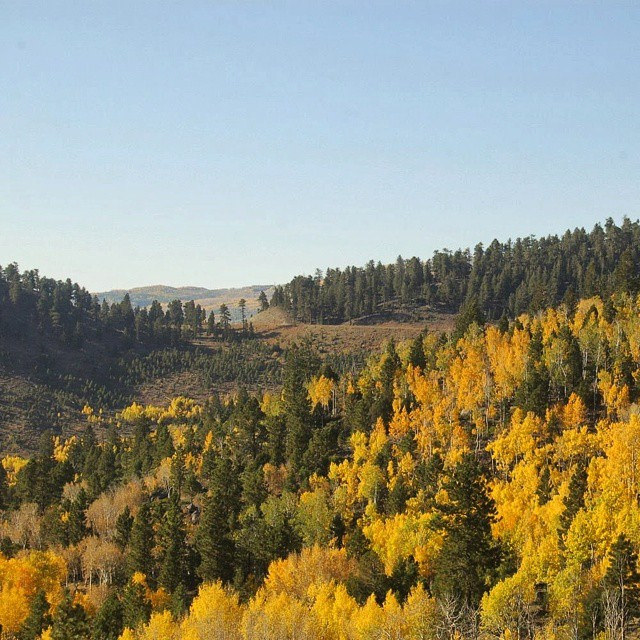 The landscape of Dixie National Forest is diverse.