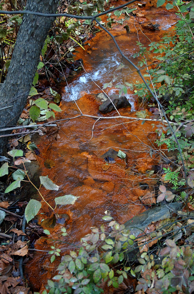 The exposed coal dust seeps into the streams, turning them brown and making the water unsafe.
