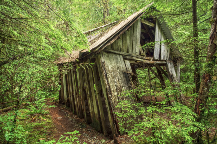 The area is dotted with amazing remnants of the past slowly being reclaimed by nature.