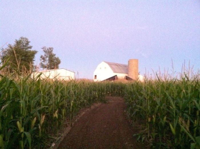 6. The Fury Tail Farm (Waynesfield)