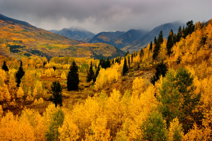 Take this gorgeous colorado fall foliage road trip 3 mcclure pass glenwood springs sciox Choice Image
