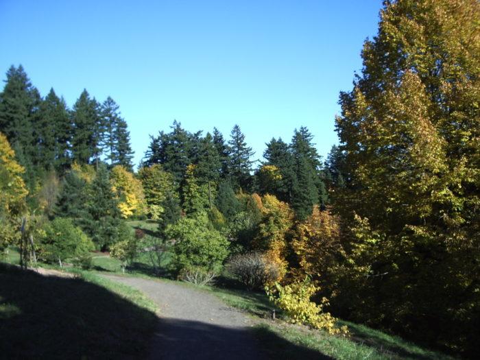 2. Hoyt Arboretum