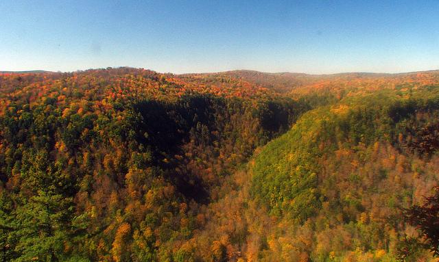 3. Pine Creek Gorge