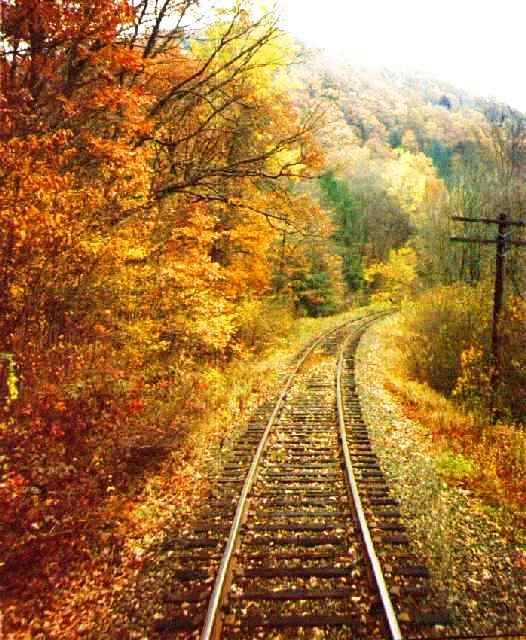 Climb Aboard The Best Fall Foliage Train Ride Near Pittsburgh