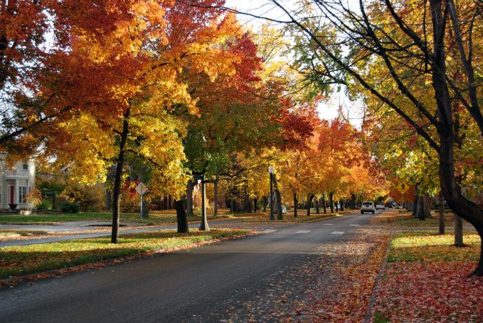 4. Perfect autumn weather.