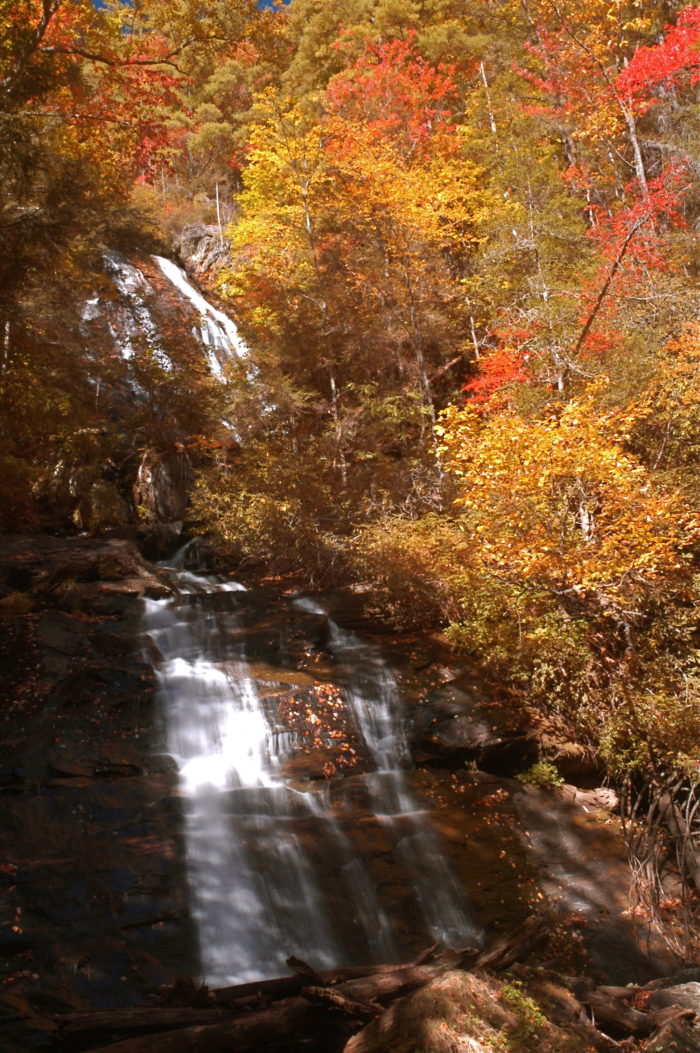 The Best Country Roads In Georgia To Drive In The Fall