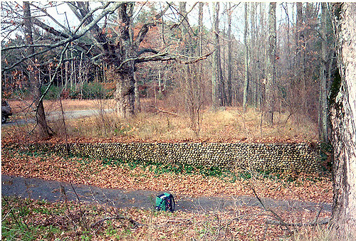 A few of Dana's old stone walls and paths also survive.