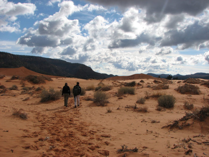 Coral Pink Sand Dunes State Park is tons of fun.