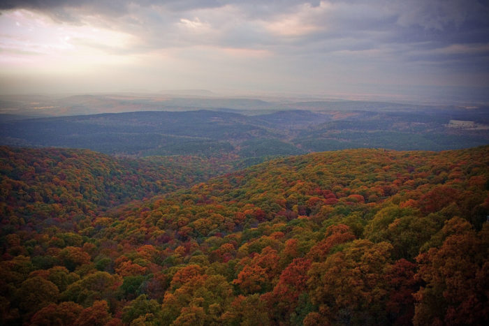 In Mount Magazine State Park, you'll find truly stunning overlooks where you can admire the full beauty of autumn in Arkansas.