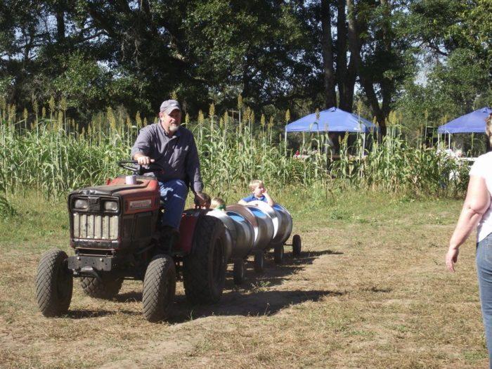 17. Aunt Louise's Farm, Waukeenah (Jefferson County)