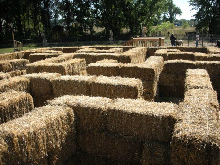 7. Cottonwood Farm