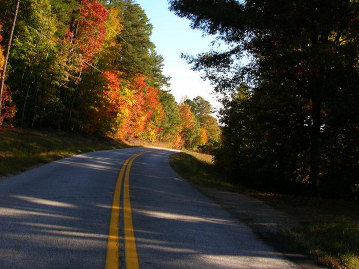 7. Georgia Foothills Loop: Canton, Ellijay, Amicalola Falls