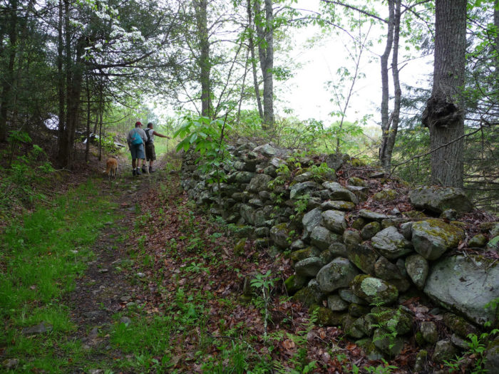 You'll walk along this stone wall to reach what's left of Cove Fort.