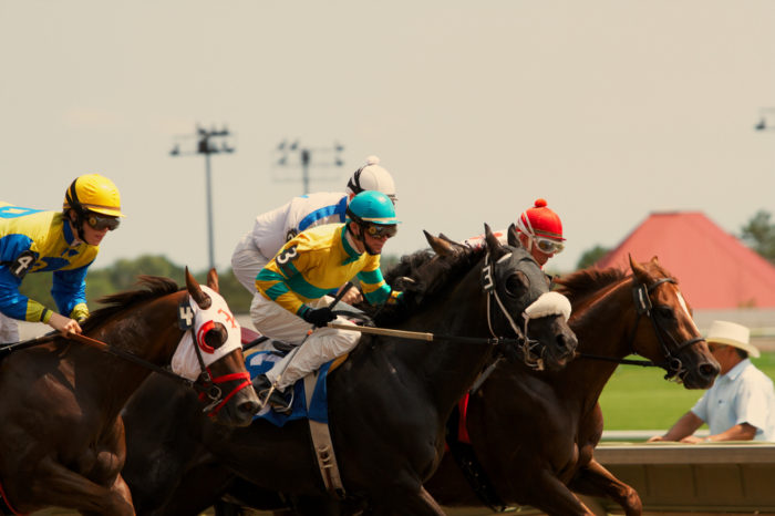 Enjoy live racing May through September, but when it gets colder there's still plenty to do!