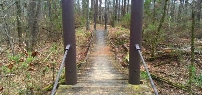 4. Swinging Bridge Nature Trail, Coldwater
