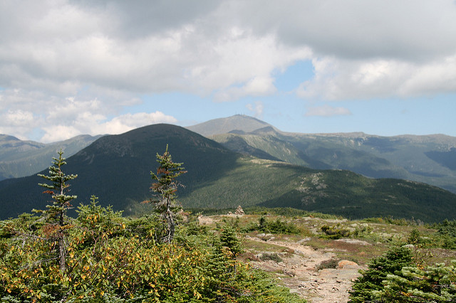 Southern Presidentials from Pierce