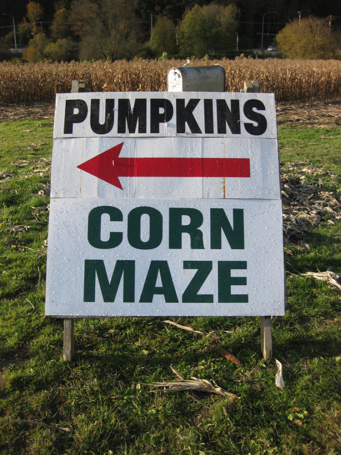 13. Anne Springs Close Greenway Fall Frolic Corn Maze - Fort Mill, SC